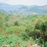 Hochland von Honduras