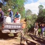 Abtransport der Kaffeekirschen