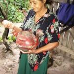 Eier, Gemüse, Mais und Kaffee muss Josefina nicht kaufen